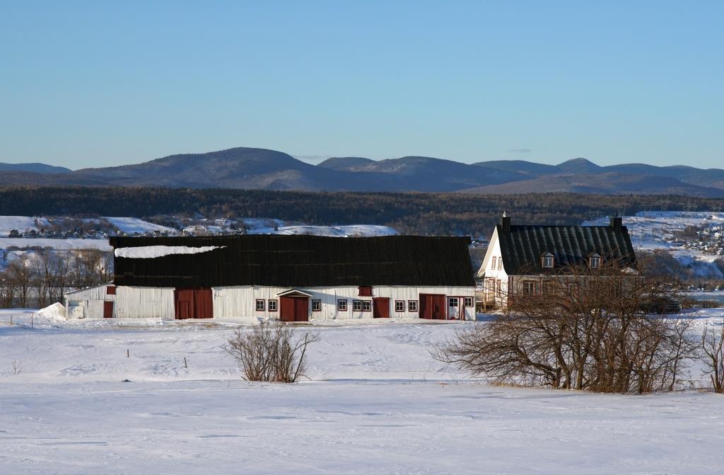 Grange longue vernaculaire du Québec à multiples fonctions agricoles. Photo : Arthur Plumpton.